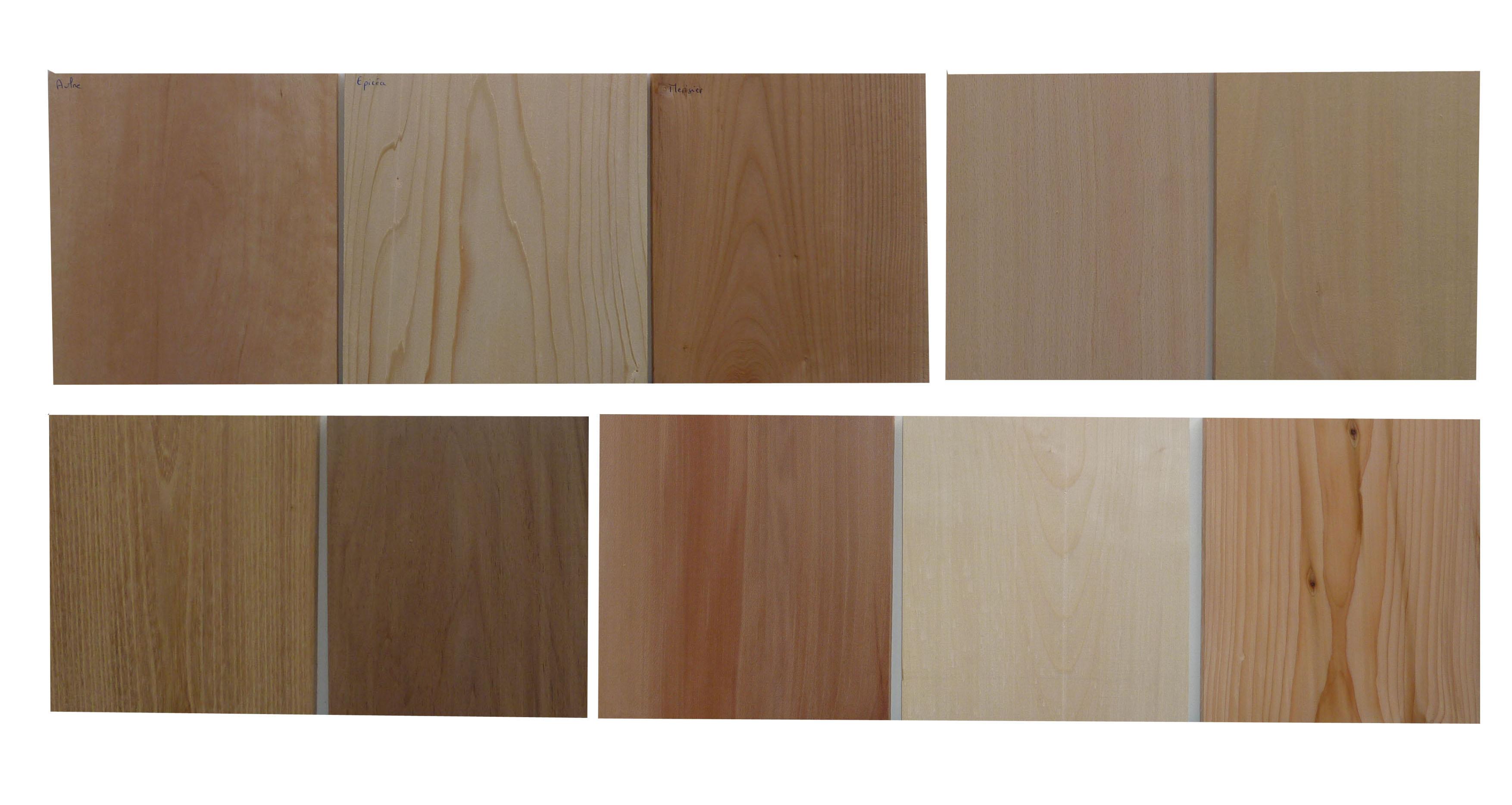 l 39 empreinte du bois coffret de plaques p 10mm largeur 15 20cm en 20cm de long. Black Bedroom Furniture Sets. Home Design Ideas